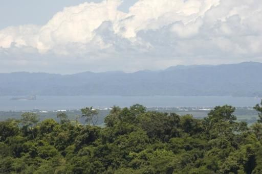 Terreno Puntarenas>Miramar>Montes de Oro - Venta:57.750 US Dollar - codigo: 21-960