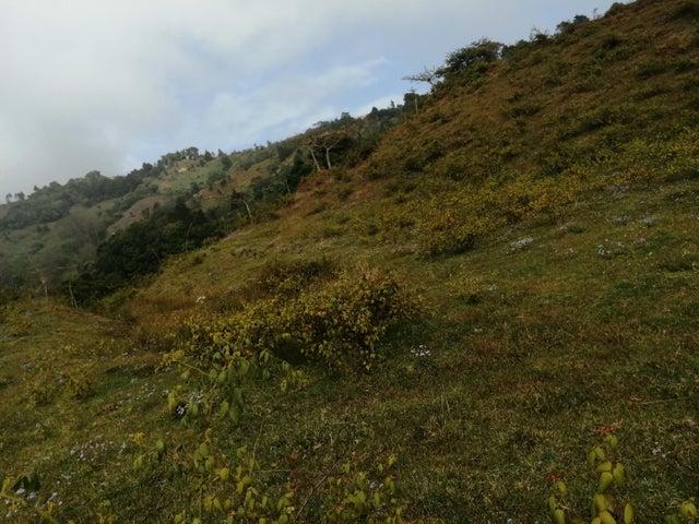 Terreno San Jose>El Jardin>Tarrazu - Venta:82.000 US Dollar - codigo: 21-973