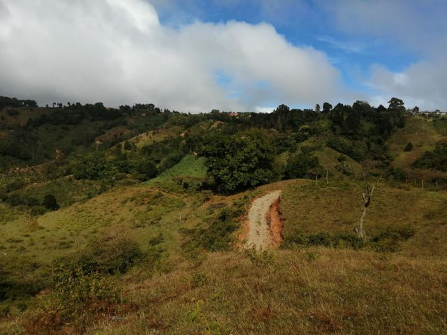 Terreno San Jose>El Jardin>Tarrazu - Venta:82.500 US Dollar - codigo: 21-1116