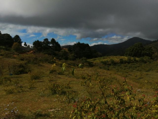 Terreno San Jose>El Jardin>Tarrazu - Venta:130.000 US Dollar - codigo: 21-1117