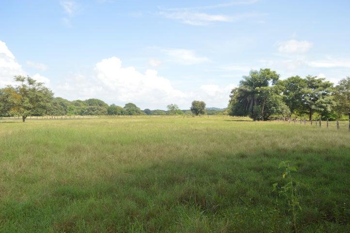 Terreno Guanacaste>Santa Barbara>Santa Cruz - Venta:70.000 US Dollar - codigo: 21-1155
