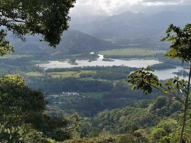 Terreno Cartago>Turrialba>Turrialba - Venta:70.000 US Dollar - codigo: 21-1405