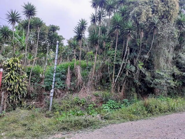 Casa Alajuela>Naranjo>Alajuela - Venta:258.100 US Dollar - codigo: 21-1516