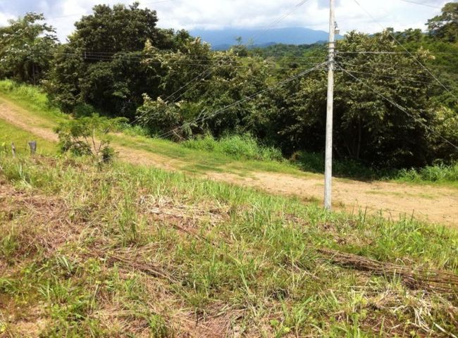 Terreno Puntarenas>Tarcoles>Garabito - Venta:200.000 US Dollar - codigo: 21-1791