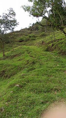 Terreno Cartago>Tobosi>El Guarco - Venta:368.640 US Dollar - codigo: 21-2151