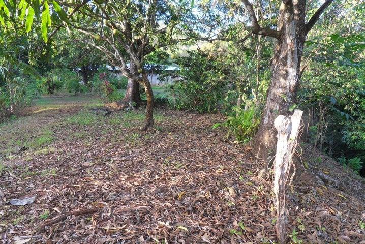 Terreno Guanacaste>Puerto Carrillo>Hojancha - Venta:120.000 US Dollar - codigo: 21-2202