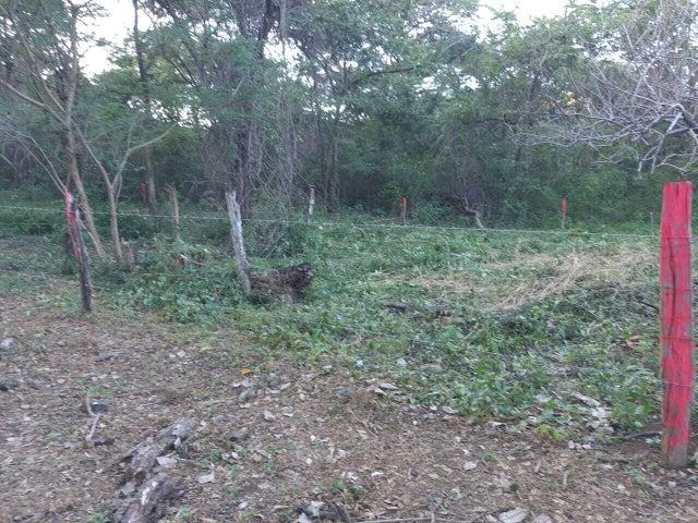 Terreno Guanacaste>San Antonio>Nicoya - Venta:13.000 US Dollar - codigo: 21-2217