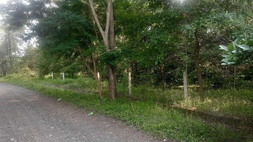 Terreno Alajuela>Orotina>Orotina - Venta:122.500 US Dollar - codigo: 21-2233
