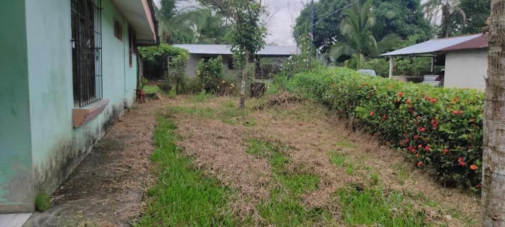 Casa Alajuela>Florencia>San Carlos - Venta:28.000 US Dollar - codigo: 21-2295