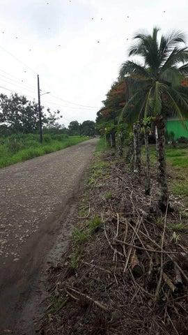 Terreno Alajuela>Muelle San Carlos>San Carlos - Venta:24.000 US Dollar - codigo: 21-2459