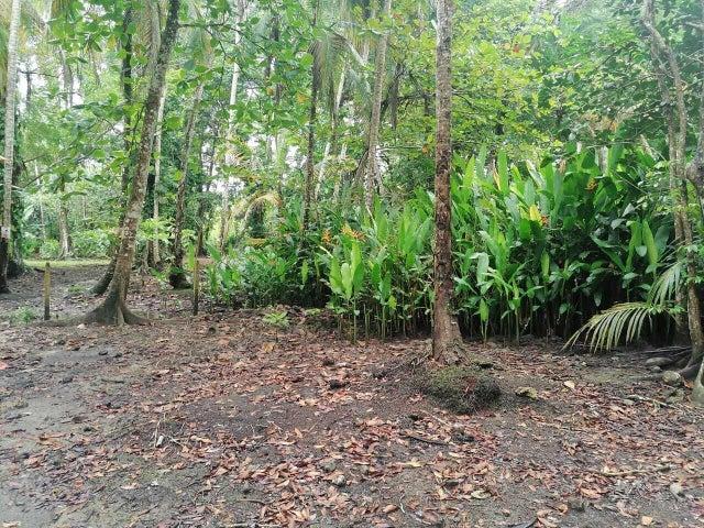 Terreno Limon>Puerto Viejo>Talamanca - Venta:500.000 US Dollar - codigo: 21-2474