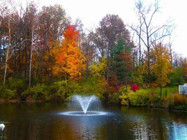 1229 Sanctuary Place, Gahanna, OH 43230