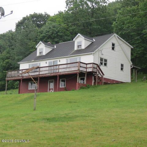 1609 DORNSIFE MOUNTAIN RD, Sunbury, PA 17801