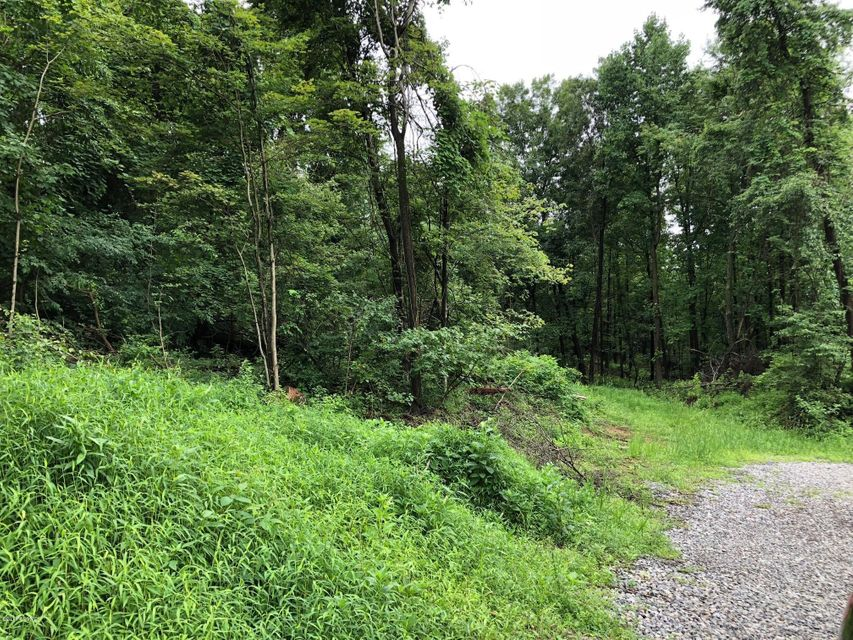 LOT #2 SCOUTING Lane, Lewisburg, PA 17837
