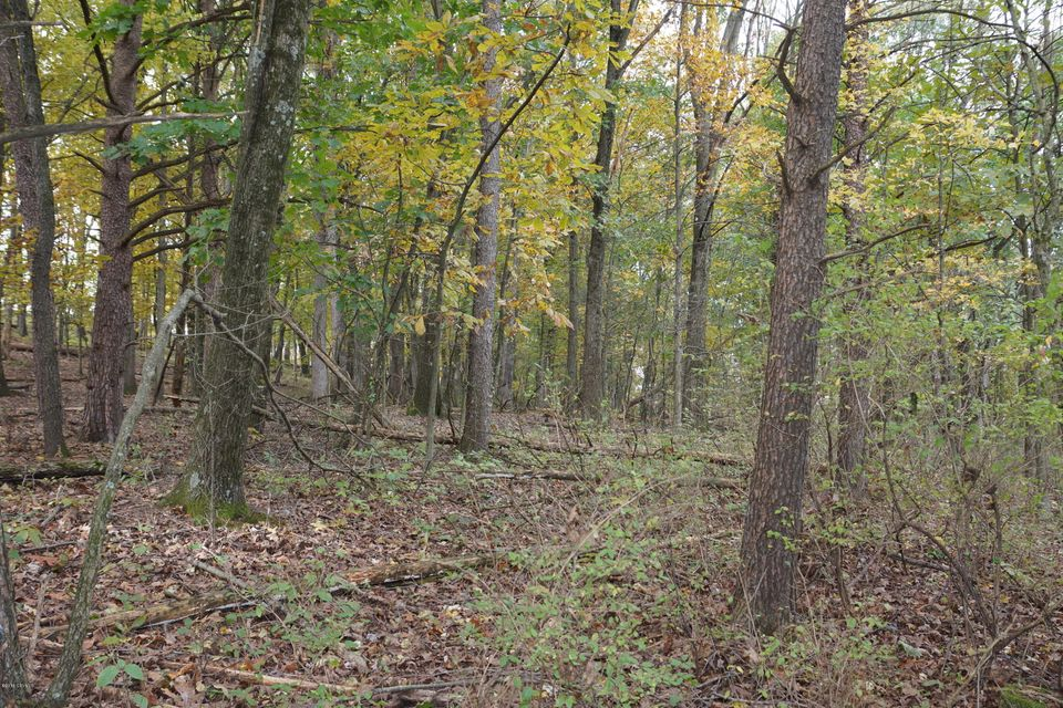 LOT 4 MILROY Road, New Columbia, PA 17856