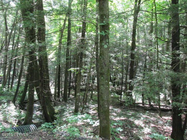 100 +/- wooded acres (photo 1)