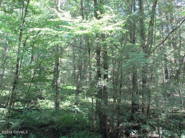 100 +/- wooded acres100 (photo 3)