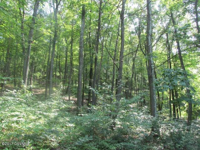 Lot#38 Birch ******** Lane, Catawissa, PA - USA (photo 1)