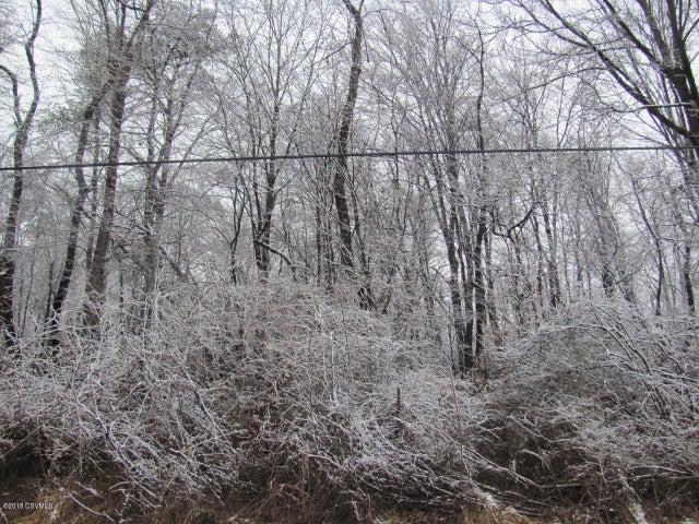 Foye ******** , Sunbury, PA - USA (photo 4)