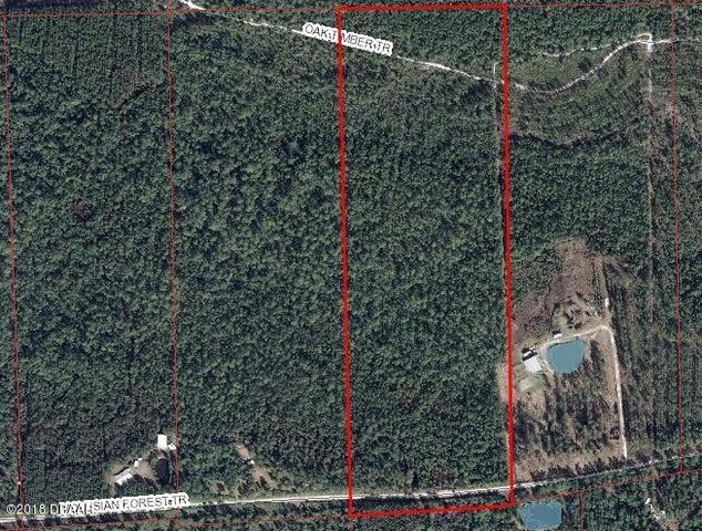 340 Volusia Forest Trail, Pierson, FL 32180