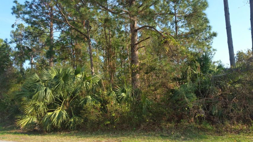 14 White Deer Lane, Palm Coast, FL 32164