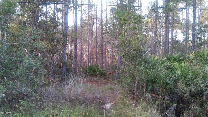 3654 Scotch Pine Lane, Ormond Beach, FL 32174