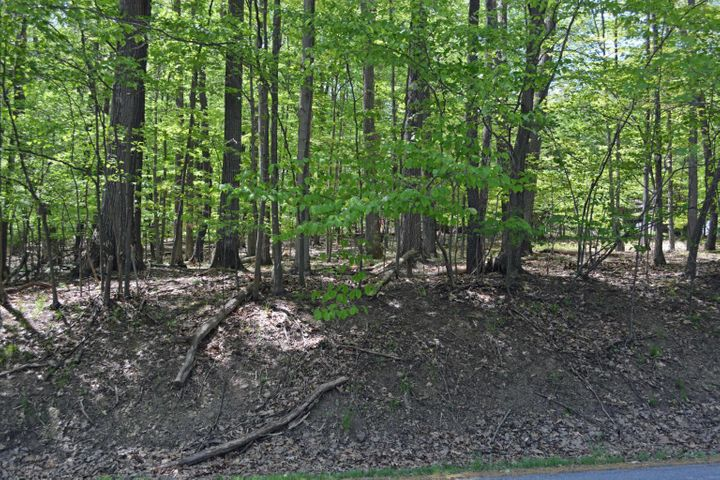 Great sloped wooded lake view lot in prime location