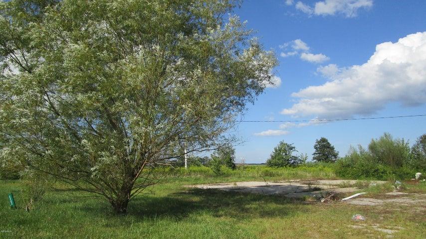 Rinard, IL 62878 (MLS# 423074) - Jeff Dunahee Realty