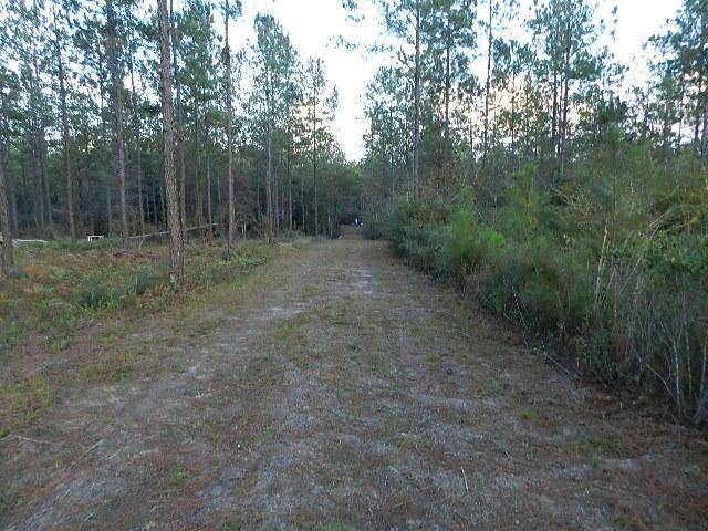 Lot 137 10 Mile Rd, Milton, FL 32571