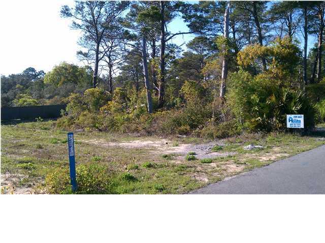 113 Satinwood Drive, Santa Rosa Beach, FL 32459