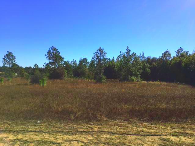 8 Acres Hickory Hammock Road, Milton, FL 32583