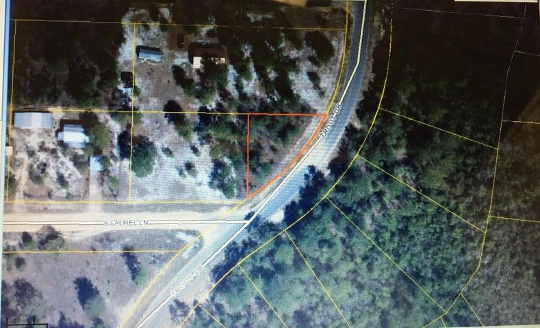 xxx Trout Drive, Defuniak Springs, FL 32433