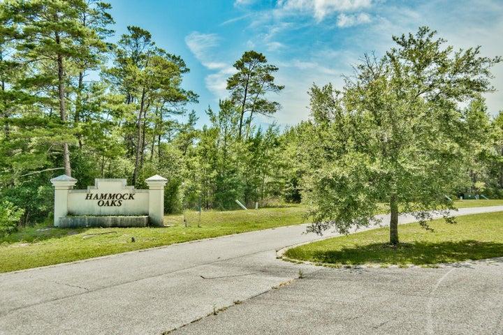 Lot 1 Hammock Oaks, Freeport, FL 32439