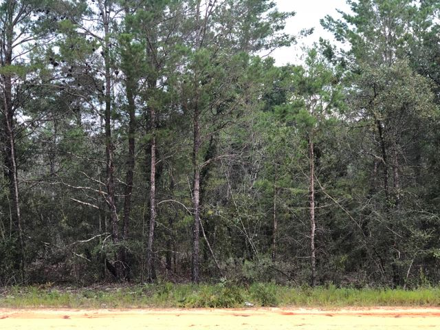8 Clover Lane, Defuniak Springs, FL 32433