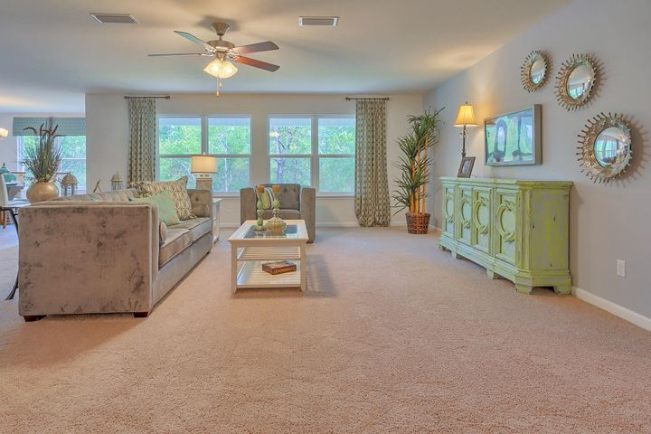 No carpet in living room/bedrooms only