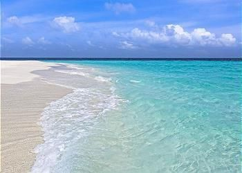Beach Blue Properties Llc Premier