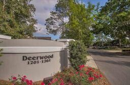 1250 Deerwood Drive, Miramar Beach, FL 32550