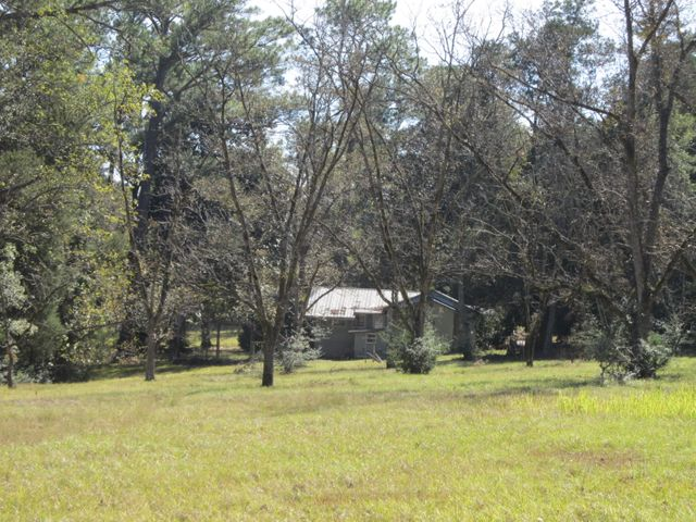 View of Home from Pecan Orchard