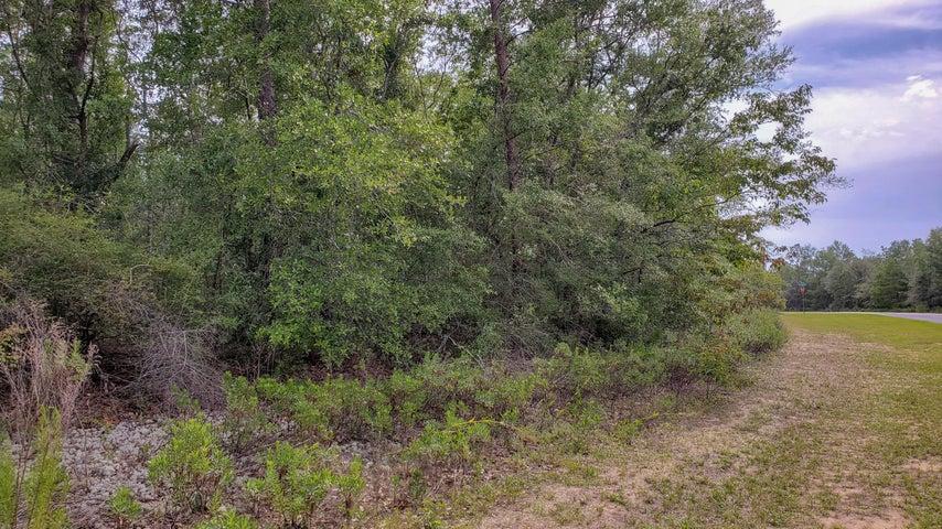 Lot 26 Shenandoah Blvd., Chipley, FL 32428