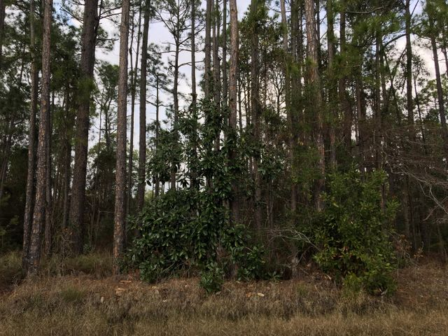 Beautiful large wooded lot, close to both the beach and the bay.  Just minutes to Ed Walline Beach Access, Gulf Place shopping, dining and all 30A has to offer. Build your dream home here with no HOA. Inventory in Santa Rosa Beach is decreasing by the day.  Don't miss this great opportunity!
