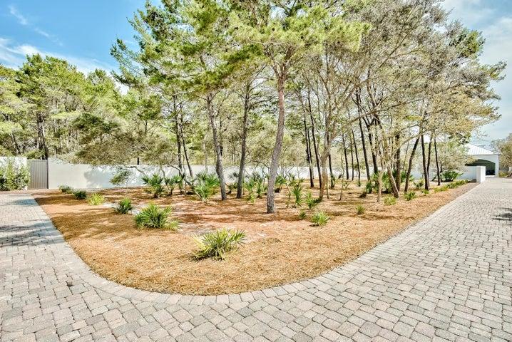 00 Walton Rose Lane, Inlet Beach, FL 32461