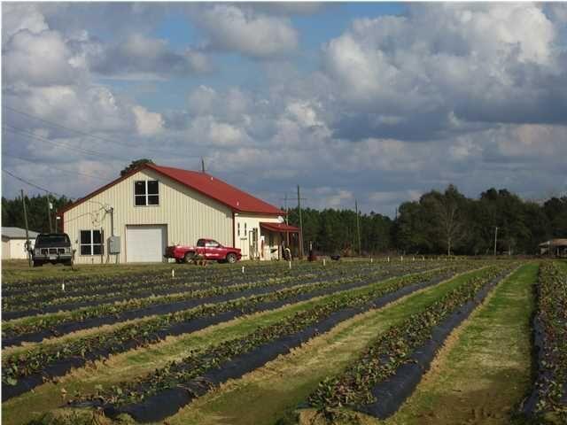 1056 Melton Road, Baker, FL 32531