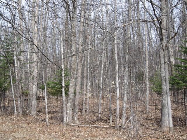 4 acre m/l M-28, Hulbert, MI 49748