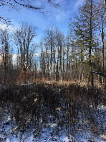 Nice 10+/- acre parcel located near Hulbert. ATV/ORV and snowmobile trails nearby.