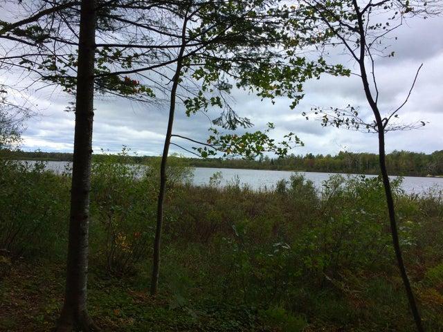 22423 S Wegwas DR, Trout Lake, MI 49793
