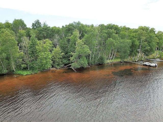 LOT 99 W Birch Shores DR, Trout Lake, MI 49793
