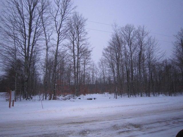 Lot 1 Maple-Wood Sub CR 98, McMillan, MI 49853