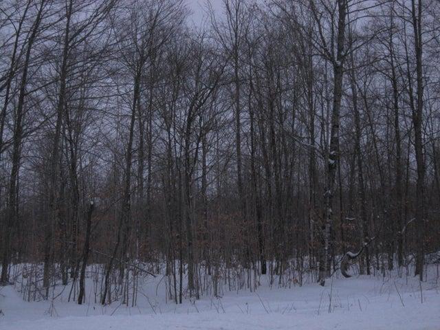Lot 3 Maple-Wood Sub CR 98, McMillan, MI 49853