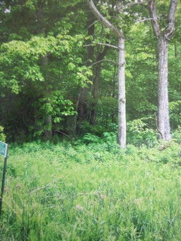 Lot 68 Oak ST (Pte. Aux Chenes), St. Ignace, MI 49781