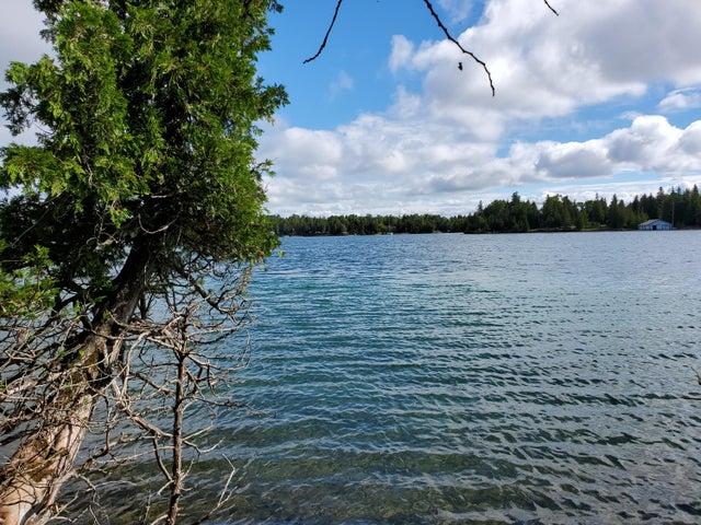 TBD S Forest LN, Cedarville, MI 49719